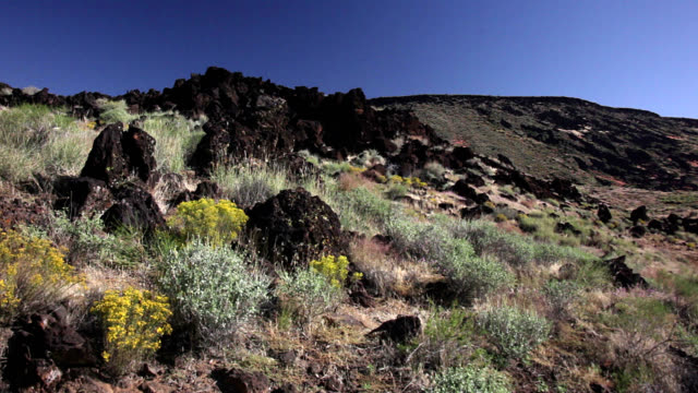 basalt outcroppings in utah - basalt stock videos & royalty-free footage