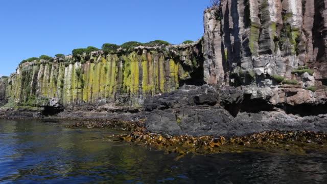 basalt rock columns on enderby island - basalt stock videos & royalty-free footage