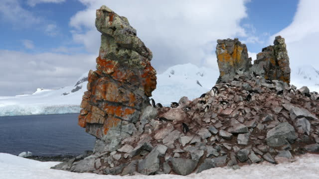basalt rock formations in antarctica - natural column stock videos and b-roll footage