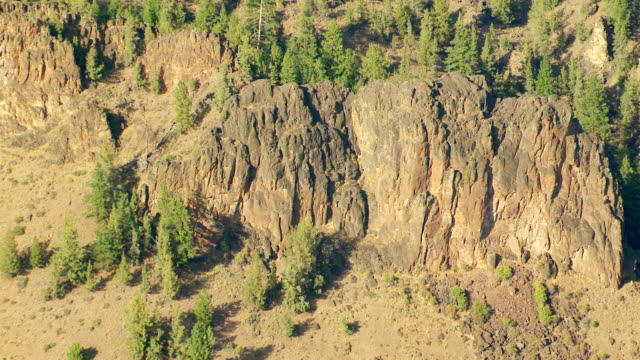 ms aerial basalt volcanic rock amid evergreen forest / oregon, united states - basalt stock videos & royalty-free footage