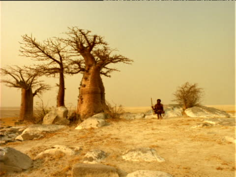 Basarwa child runs towards tribesman sitting by Baobab trees, Botswana