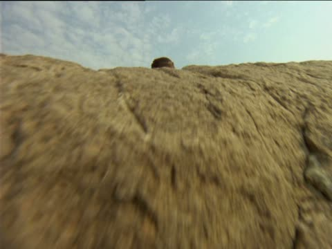 stockvideo's en b-roll-footage met a basarwa tribesman leans over a rocky ledge. - vensterbank