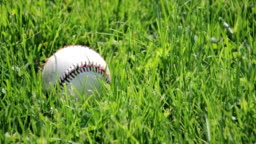 Baseball in Blowing Grass