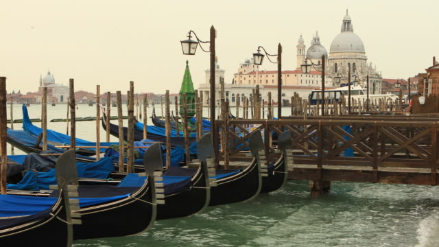 Basilica of Santa Maria Della Salute and Gondolas, Venice, Italy