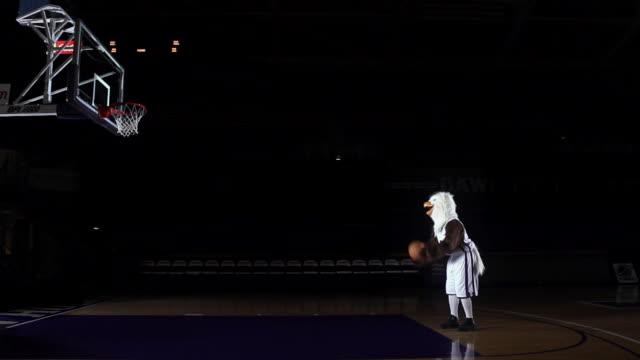 vídeos y material grabado en eventos de stock de ms basketball eagle mascot missing free throw / washington, usa - fracaso