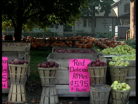 baskets of apples and pumpkins in background sign reading 'red delicious apples $5.95' traffic and horse drawn carriage passes in background pennsylvania - amische stock-videos und b-roll-filmmaterial
