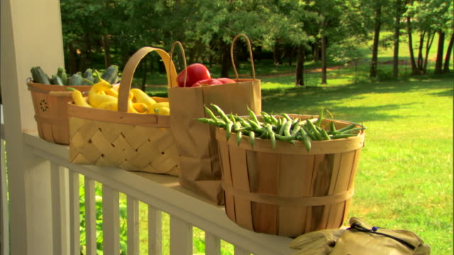 baskets of fresh organic produce - gardening glove stock videos & royalty-free footage