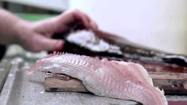 vídeos de stock e filmes b-roll de bass cortado em filete - cortado em filete