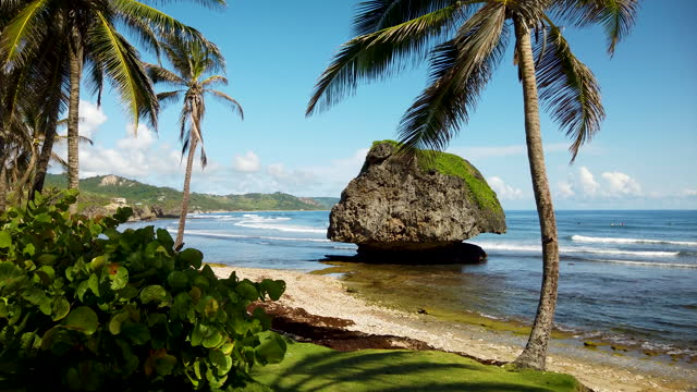bathsheba, barbados (3) - caribbean stock videos & royalty-free footage