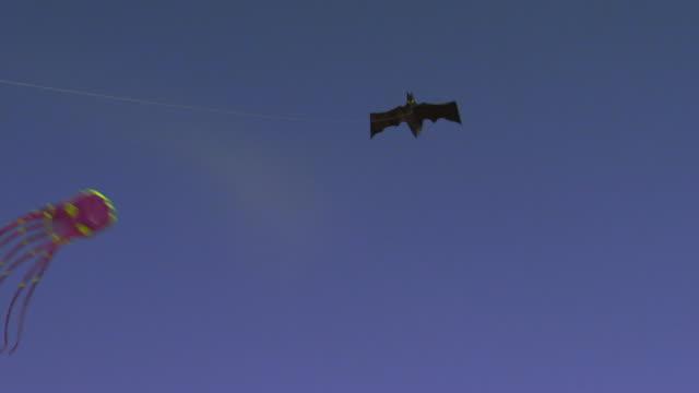 vídeos de stock, filmes e b-roll de batman and octopus kites flying - pipa brinquedo