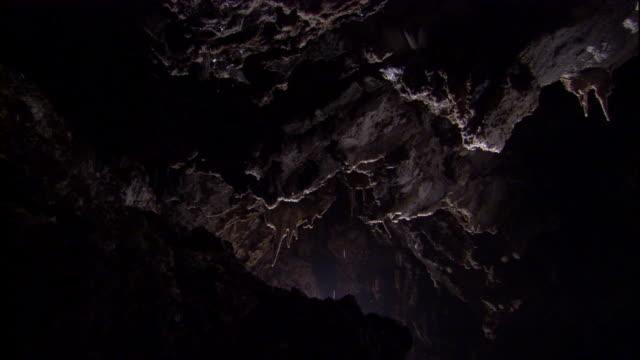 stockvideo's en b-roll-footage met bats fly through cueva de villa luz, mexico. available in hd. - grot