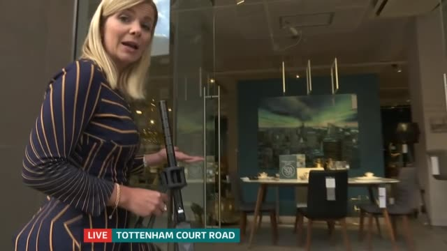 battersea dogs and cats home show rescue animals in central london window displays; uk, london, tottenham court road; natalie pallier interview.... - tottenham court road stock videos & royalty-free footage
