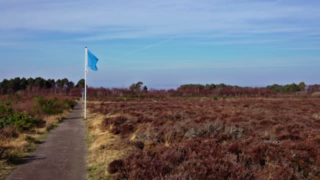 battle of culloden, drumossie moor, inverness - battlefield stock videos & royalty-free footage