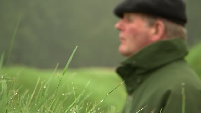 vídeos y material grabado en eventos de stock de battle of the somme centenary michael morpurgo reflects air view / aerial field scarred by lines of wartiem trenches and shell craters morpurgo... - michael morpurgo