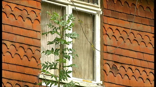 battle to save sir arthur conan doyle's former home; ext russian television crew filming in grounds of doyle property shattered window derelict... - arthur conan doyle stock videos & royalty-free footage