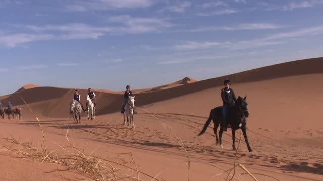 battling gusts of sandy wind riders from across the world struggled to control feisty stallions as they raced in the first gallops of morocco a... - endurance race stock videos and b-roll footage