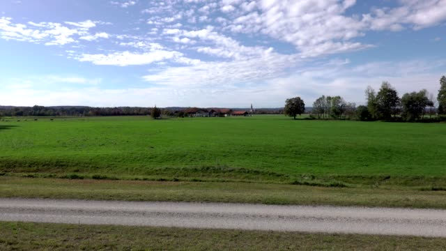 bavarian landscape in autumn - hoofed mammal stock videos & royalty-free footage