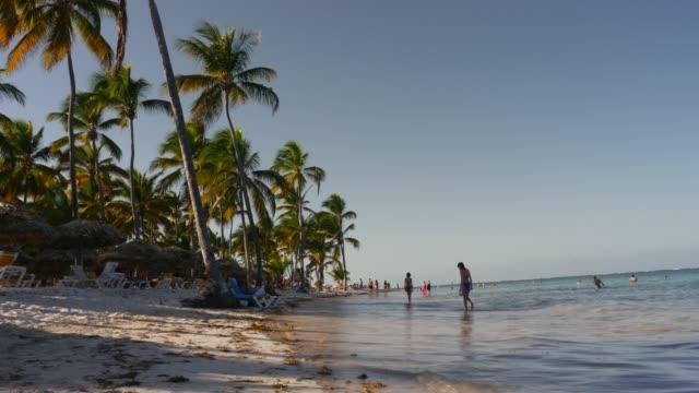bavaro beach in punta cana - punta cana stock videos and b-roll footage