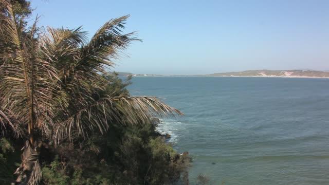 ws, pan, bay and town along coastline, taolanaro, toliara province, madagascar - fan palm tree stock videos & royalty-free footage