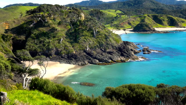 bay of islands - baia delle isole nuova zelanda video stock e b–roll