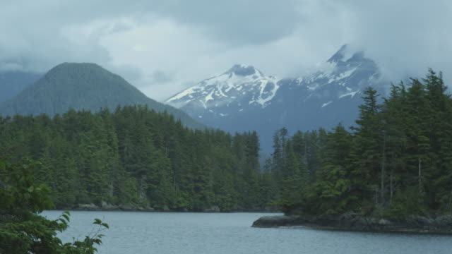 Bay with forest, snow covered mountains, clouds, bird flying, Alaska, 2011