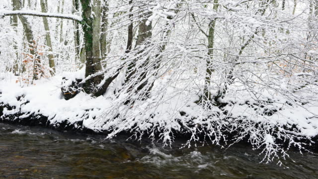 bayas or baias river, snowing in winter, gorbeia parque natural, alava, basque country, spain, europe - parque natural stock videos and b-roll footage