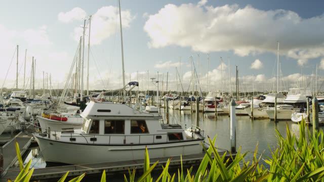 bayswater marina - jachthafen stock-videos und b-roll-filmmaterial