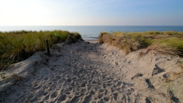 beach access to baltic sea, ahrenshoop, fischland-darß, baltic sea, mecklenburg-vorpommern, germany - footpath stock-videos und b-roll-filmmaterial