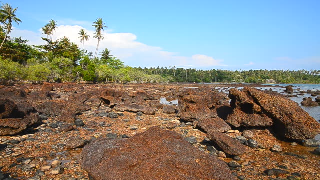beach and rocks on the island - full hd format stock videos & royalty-free footage