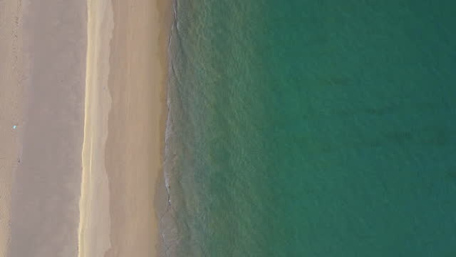 beach and waves from top view. turquoise water background from top view. summer seascape from air. top view from drone. travel concept and idea - animal colour stock videos & royalty-free footage