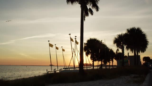 beach at dusk - miami stock videos & royalty-free footage
