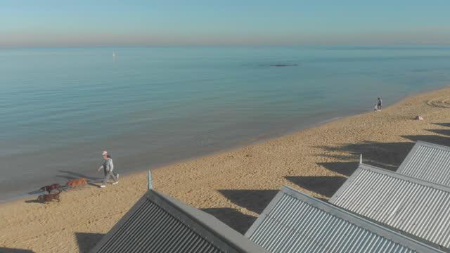 vídeos de stock e filmes b-roll de beach bathing boxes, brighton, australia - water's edge