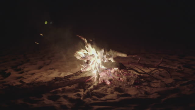 beach bonfire - summer solstice stock videos and b-roll footage