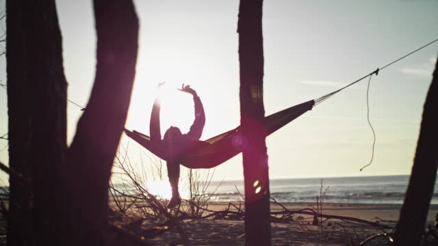 beach camping. hammock between two pines. lens flares - area selvatica video stock e b–roll