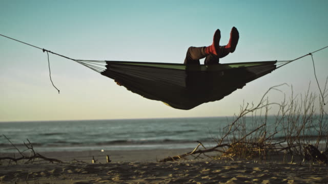 beach camping. hammock between two pines - wilderness stock videos and b-roll footage