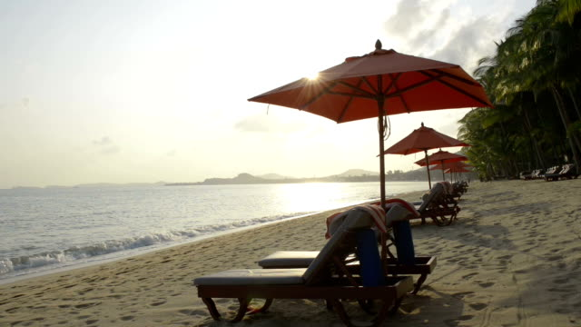 beach chairs with red umbrellas at palm tree beach at sunrise - beach chairs stock videos & royalty-free footage