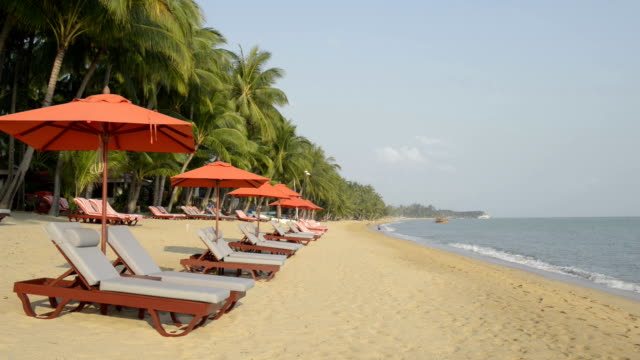 beach chairs with red umbrellas at palm tree beach - beach umbrella stock videos and b-roll footage