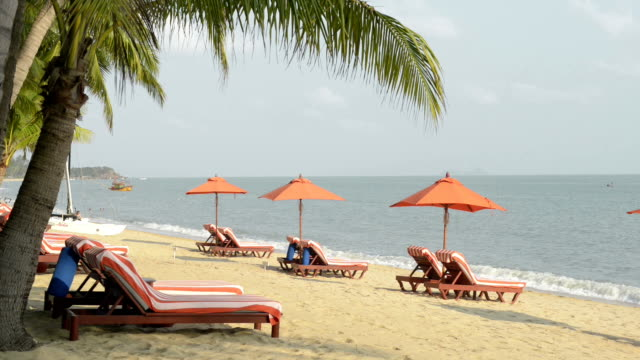 Beach chairs with red umbrellas at palm tree beach