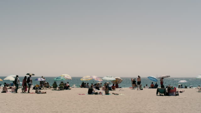 beach day - santa monica stock videos and b-roll footage