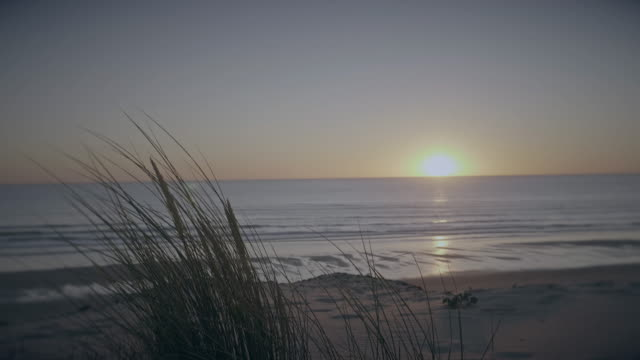 Beach dunes sunset timelapse.