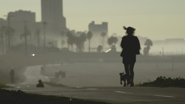 beach exercise - city of los angeles stock videos & royalty-free footage