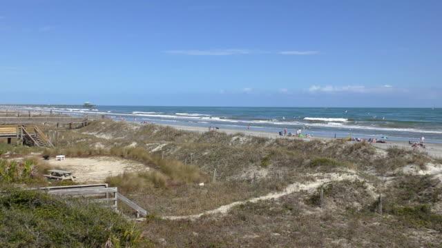 beach - folly island, south carolina - carolina beach stock videos & royalty-free footage