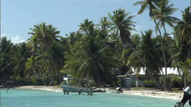 WS PAN MS Beach front house, palm trees and boats on Takapoto atoll / Tuamotu, French Polynesia