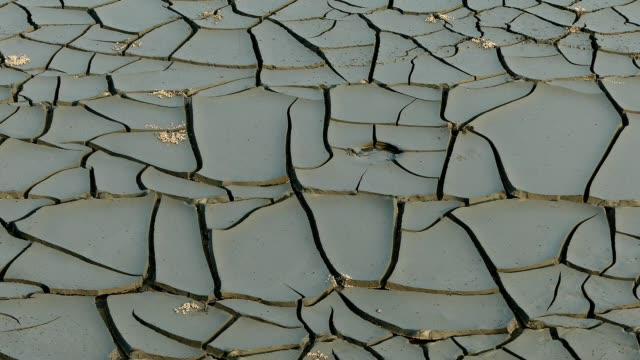 vídeos de stock e filmes b-roll de beach full of dried-out clay cracked surface - lama solo