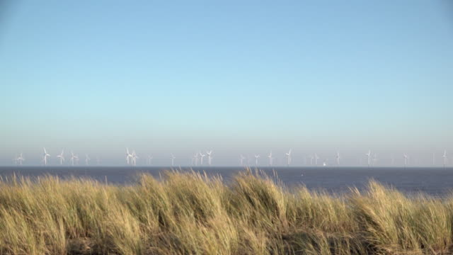 beach grasses on top of sand dunes blow in the wind as turbine blades spin at the huge lincs wind farm, that lie eight kilometres offshore in the... - blowing stock videos & royalty-free footage