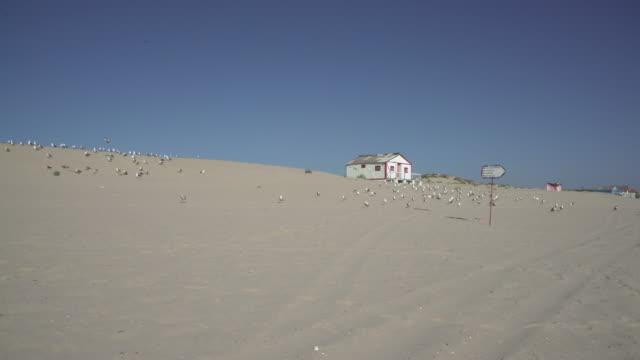 vídeos de stock e filmes b-roll de beach house - plano picado
