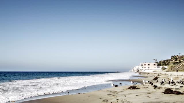 Beach in america