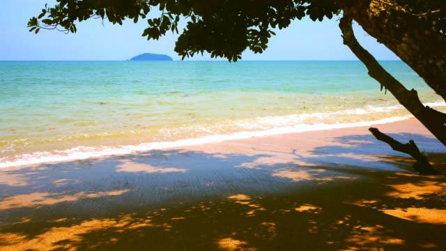 beach in andaman sea - andaman sea stock videos & royalty-free footage