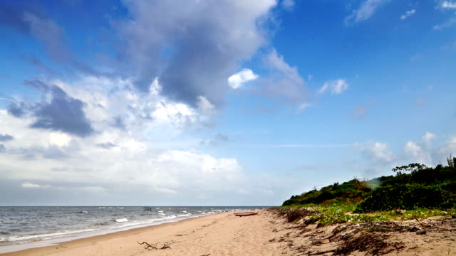 vídeos de stock, filmes e b-roll de praia na ilha de marajó no norte do brasil - amazonas state brazil