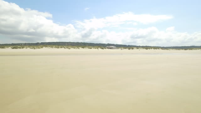 beach in portugal - low tide stock videos & royalty-free footage